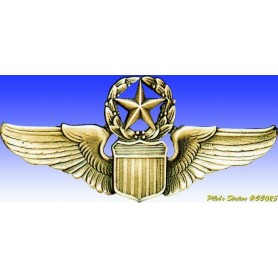 USAAF Command Pilot wings - Insigne - DJH