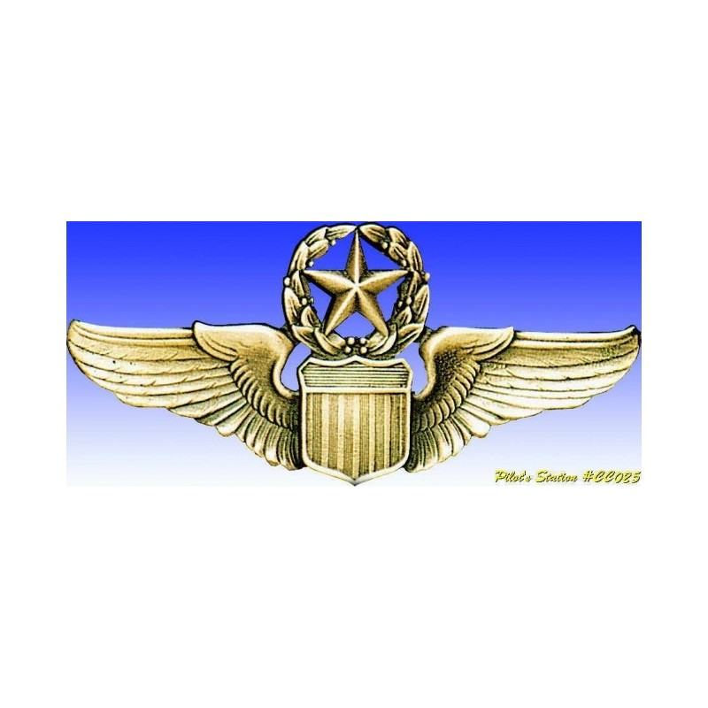 Metal badge -USAAF Command Pilot wings - Insigne - DJH