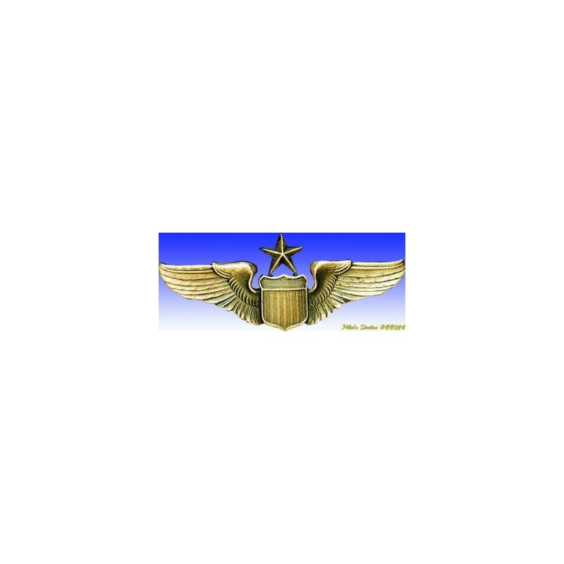 Insigne metal -USAAF Senior Pilot - Insigne - DJH
