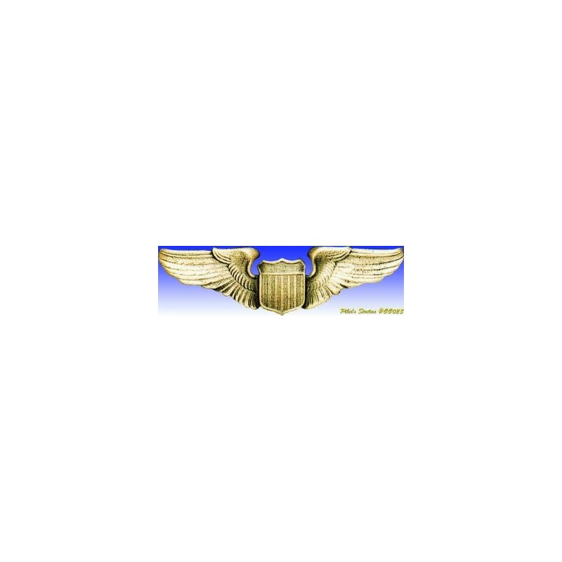 Metal badge -USAAF pilot Wings - Insigne - DJH