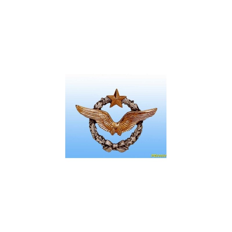 Metal badge -pilot Armée de l'Air - French patent 4.5cm