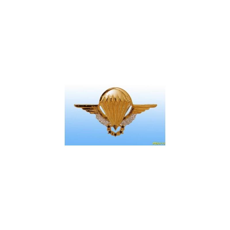 Metal badge - Para patent