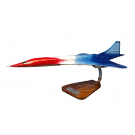 plane model - Concorde 20eme anniversaire 1/100 - 62cm